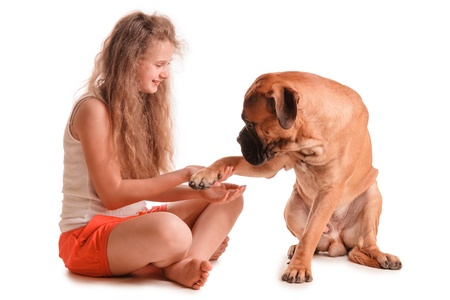 happy playful teenage girl and a dog bullmastiff  isolated on white background photo