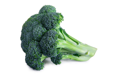 one ripe vegetable broccoli isolated on a white background