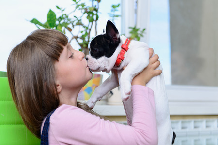 caucasion: child girl kisses small pet a French Bulldog puppy
