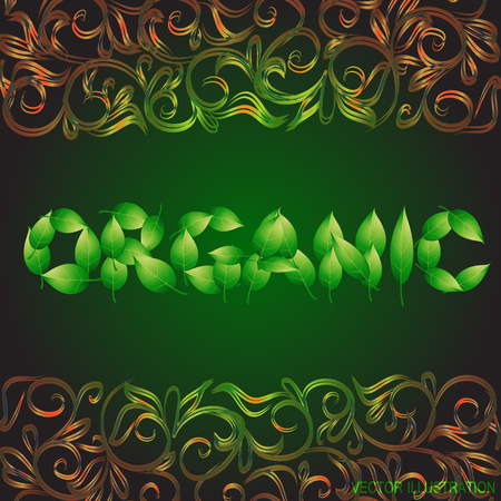 Green background with text organic made from leaves. Vector illustration with vegetative ornamental border.. Ilustração