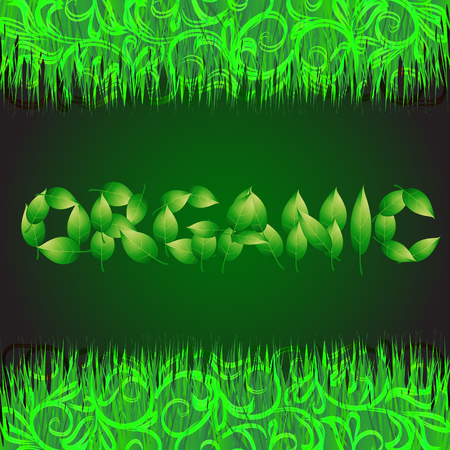 grasses: Green background with text organic made from leaves. Illustration with vegetative grasses and ornamental border. Stock Photo