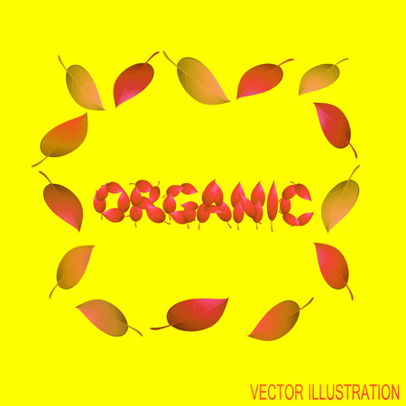 Autumn concept with organic leaves design text with yellow leaves; Bright illustration on the theme of autumn. Illustration