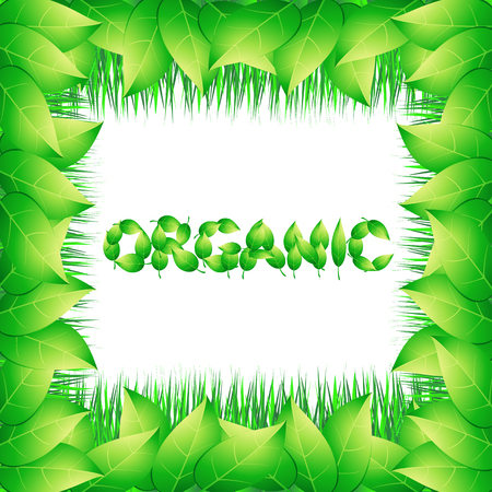 Organic background with green leaves. Bright illustration on the theme of organic.