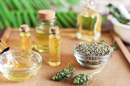 Bottles of hemp oil with cannabis seeds and dry leaves on white wooden table. Medical CBD oil. Alternative medicine concept.