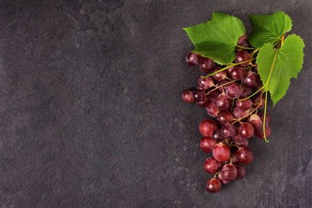 Bunch of ripe red grape with leaves on black background top view. Grape fruit background with copy space for design.