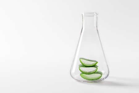 Aloe vera plant slices in a laboratory flask on white background. Aloe vera ingredients for natural cosmetics and alternative medicine. Stock fotó