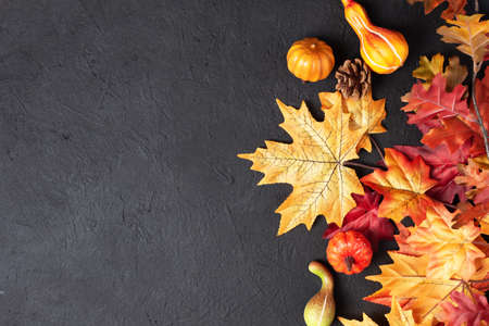 Autumn thanksgiving day background with decorative pumpkins and maple leaves on black background top view. Autumn Thanksgiving greeting card.
