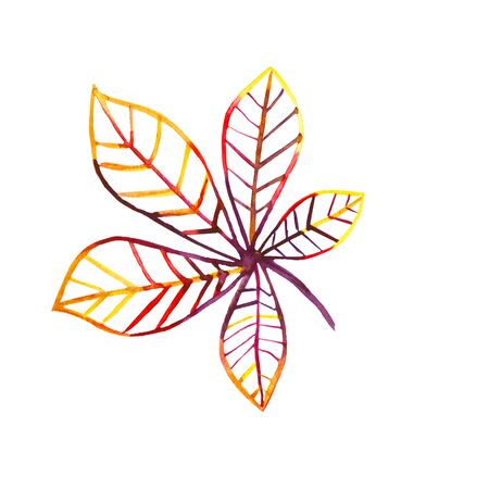 Hand-drawn watercolor outline of a chestnut leaf in orange, red and purple colors on a white background. Multi-colored leaf contour Imagens - 133694286