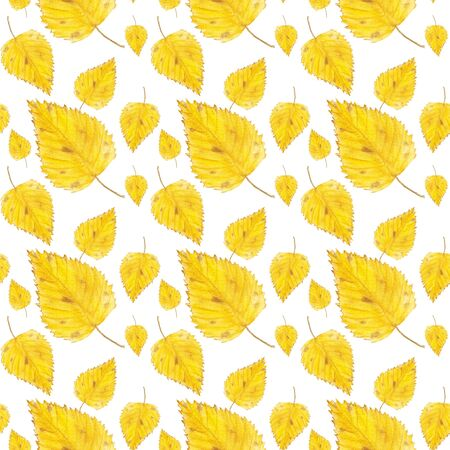 Watercolor seamless pattern with yellow birch leaves. Hand drawn autumn illustration