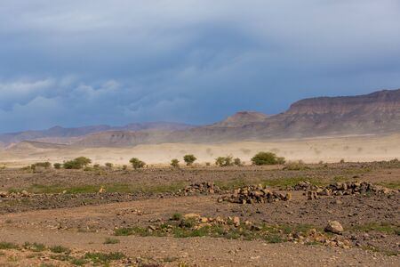 Sahara Desert in Morocco. Panoramic dessert landscape. Sandstorm, rocks, dramatic dark blue sky, stones and acacia trees in Africa.