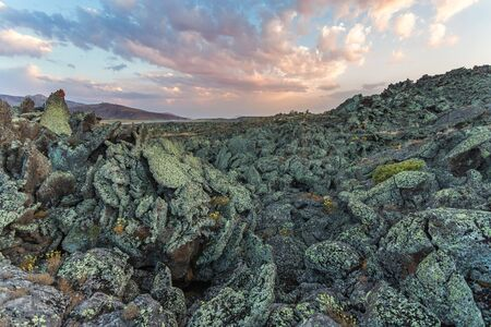 Rocky desert. Stones covered with lichens. Lava fields near Mount Ararat in eastern Turkey, Agri Province. Unusual desert landscape Imagens