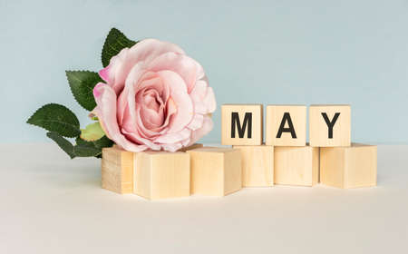 May. Image of may 1 white block calendar on white background with flowers. Spring day, empty space for text. International Workers' Day