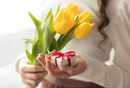 Female hands hold tulips and gift box on write background Фото со стока