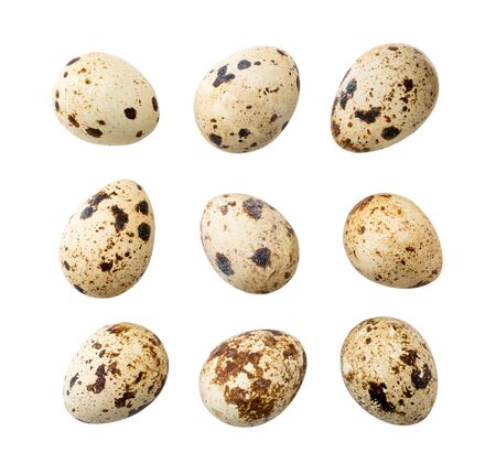 Set of quail eggs isolated on a white. Banco de Imagens