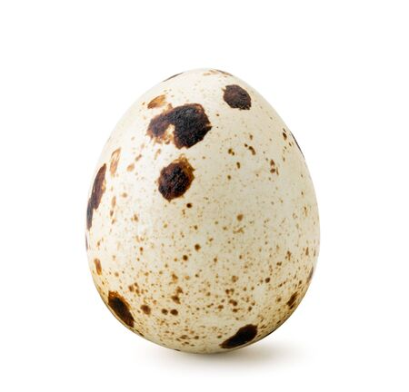 One quail egg close-up on a white. Isolated