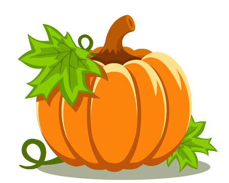 Pumpkin with leaves close-up on a white background. Banco de Imagens - 129553001