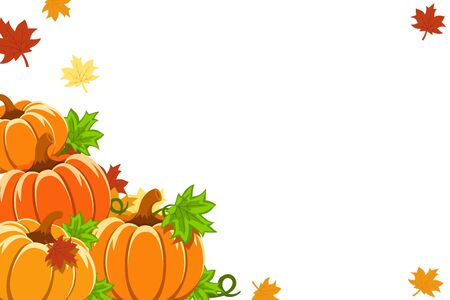 Pile of pumpkins with yellow leaves on a white background, space for text.
