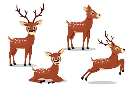 Set of wild deer in different poses on a white background. Character