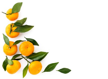 Ripe tangerines with leaves on a white background, space for text. The view of top.