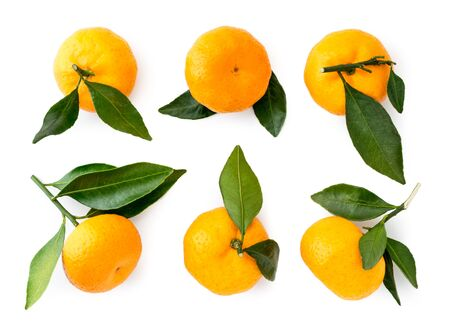 Set of ripe tangerines with leaves on a white . The view of the top. Stok Fotoğraf