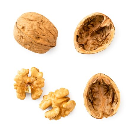 Set the walnut, shell and kernel of walnut on a white background. The view of top.