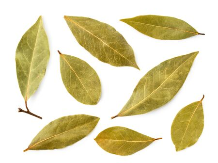 Set of Bay leaves on a white background. The view of the top. Stok Fotoğraf