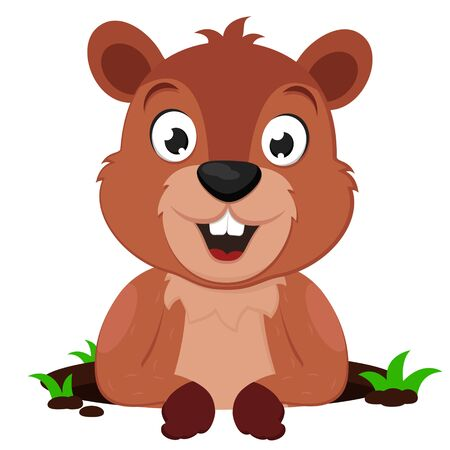 A Groundhog looks out of a hole and smiles against a white background. Groundhog day, predict