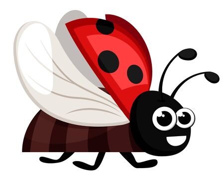 Ladybug flies and smiles on a white background. Character Ilustrace