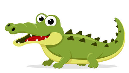 Crocodile stands and smiles on a white background. The character