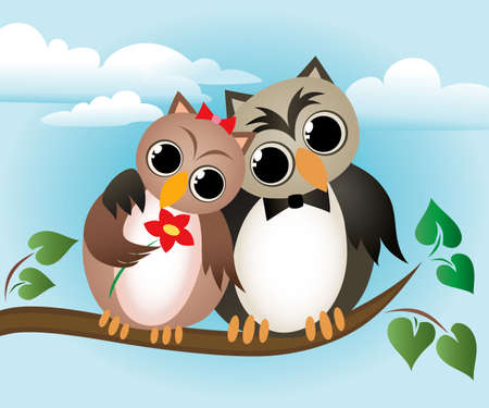 two animals: Lovers owl sitting on a branch.