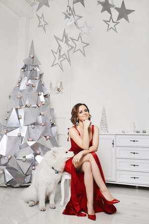 Beautiful and sexy long-legged model girl in the fashionable red dress and in trendy red shoes posing with cute Samoyed dog near the silver Christmas tree at white interior decorated for New Year Standard-Bild
