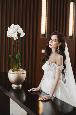 Young sexy bride with perfect body and big breasts in the fashionable wedding dress and in big luxury earrings posing at luxury interior
