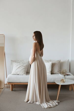 Young pregnant woman holding her belly in a living room interior. Young pregnant beauty in long romantic dress near the couch at home interior.Awaiting of baby. Lifestyle concept Standard-Bild