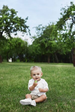 Little baby boy in white shirt and shorts sitting alone on the grass in summer day. Small kid 1-year-old in posing outdoors. Standard-Bild