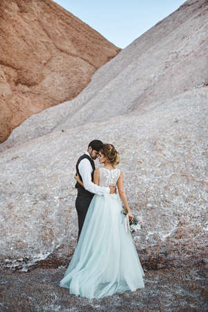 Stylish wedding couple, a young bride and handsome groom, standing together and hugging, over the beautiful landscape with mountains