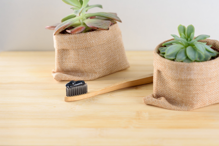 Bamboo toothbrush with charcoal toothpaste by the beautiful succulent plant on wooden background.