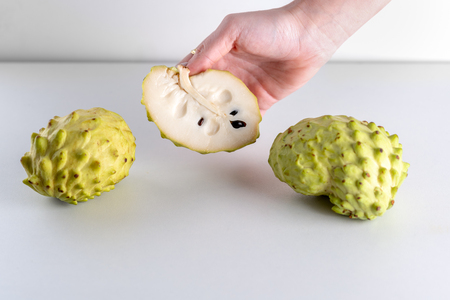 Annona, Custard Apple, Cherimoya, Sugar Apple. Woman Hands Holding Annona Fruit on White Background.