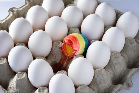 Broken egg with the colors of the LGBT flag surrounded of white other many eggs  in carton  box. International Day Against Homophobia concept.