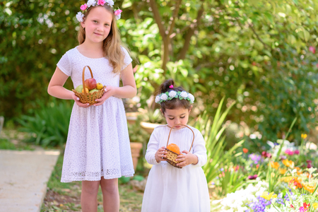 Harvest. Shavuot. Two cute smiling little girls holds basket with fruits at the beautiful summer garden. Portrait adorable small kids outdoor.