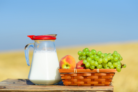First fruits habikkurim in hebrew  and milk on wooden table. Symbols of jewish holiday - Shavuot. Grapes and peaches on basket outdoor on the wheat field and blue sky background.