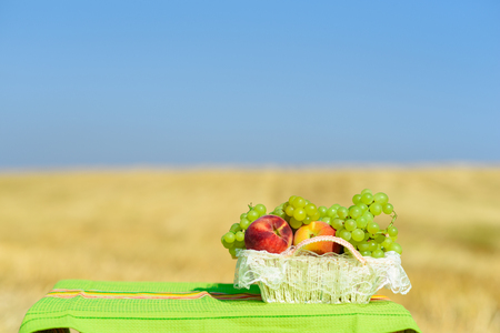 First fruits habikkurim in hebrew  on  rustic towel. Symbols of jewish holiday - Shavuot. Grapes and peaches on straw white basket outdoor on the yellow wheat field and blue sky background. 版權商用圖片