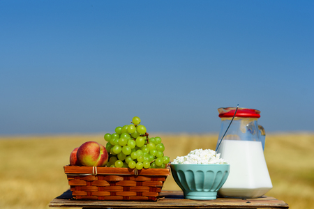 First fruits habikkurim in hebrew, white cheese and milk on wooden table. Symbols of jewish holiday - Shavuot. Grapes and peaches on basket outdoor on the wheat field and blue sky background.