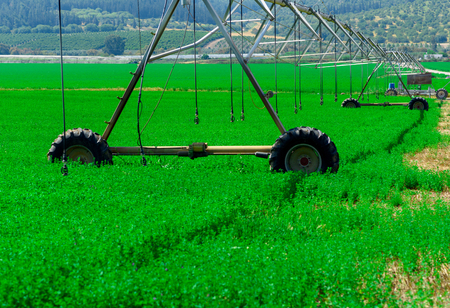 Central pivot irrigation system in a green field in a sunny day. Modern farming 版權商用圖片