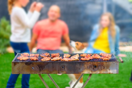 Dinner party, barbecue and chicken fillet on grill .Blurred background of family with dog having fun on summer garden . Stock fotó