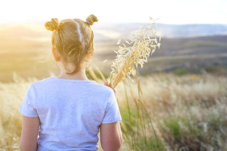 Autumn little girl enjoying nature on the field. Beauty Girl Outdoors holding spikes of wheat and ears of oats in sunlight rays. Back view beautiful Teenage with two hair bun standing on the meadow.