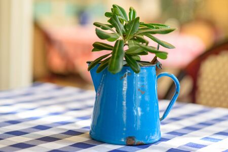 Relaxation with blue teapot on wooden table, warm light in the morning or sunset. Design restaurant or cafe house or back yard.