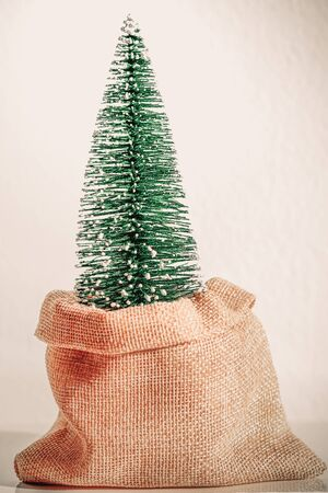 Zero Waste Christmas. Christmas tree in reusable bag, vintage style.