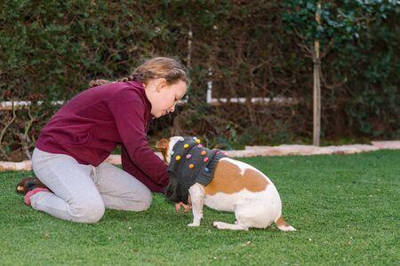 Beautiful teen girl dressing sweater on her small dog. Pet fashion.Series. Image 2.