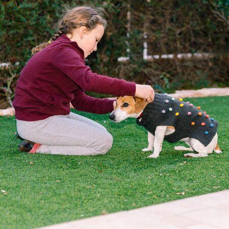 Beautiful teen girl dressing sweater on her small dog. Pet fashion.Series. Image 4. 写真素材