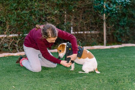 Beautiful teen girl dressing sweater on her small dog. Pet fashion.Series. Image 3.